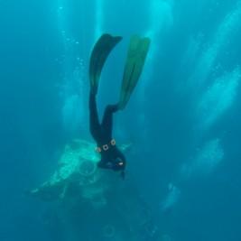 Free diving Eilat